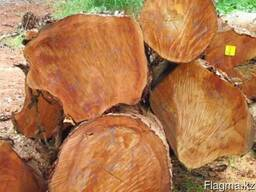 African timber logs and lumber for sell