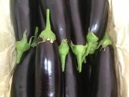 Баклажаны урожай 2019 года. тел- - фото 3