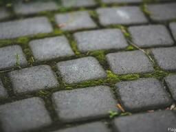 Брусчатка. Тротуарная плитка. ЖМИ!