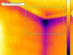 Диагностика утечек тепла и скрытых протечек воды.
