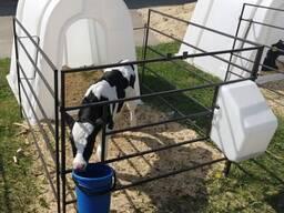 Домик для содержания теленка