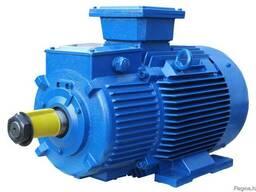 Электродвигатель 4АН 110 кВт 3000 об. мин