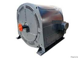 Электродвигатель ДАЗО 13-55-6Ш-М 320 кВт 1000 об. мин 6000V