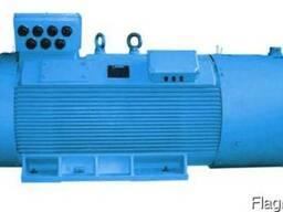 Электродвигатель Menzel 400V 400kW Подробнее:
