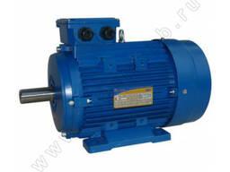 Общепромышленный электродвигатель 5АИ 180 S2