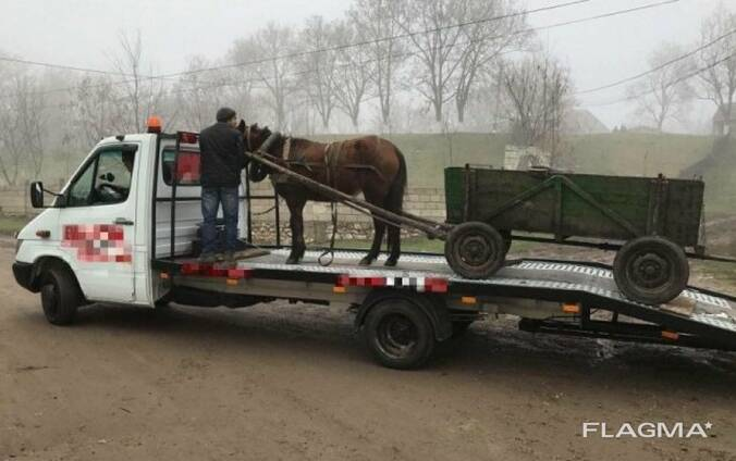 Эвакуатор. Платформа до 1500 кг. Перевозка грузов.