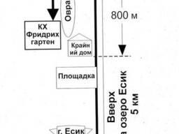 Груши крупномеры Алматы 10000 тг. - фото 2