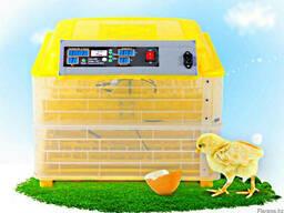 Инкубаторы для яиц(домашние и промышленные)