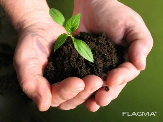 Испытания почвы