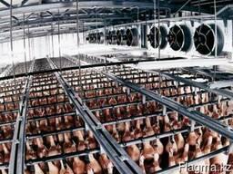Камеры хранение для мяса оборудование с бесплатным расчетом