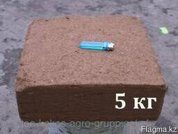 Кокосовый субстрат (блок-5кг) - photo 2