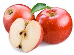 Компания продает яблоко оптом