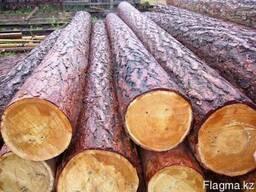 Круглый лес сосна лиственница диаметр от 18 и выше сорт 1-2