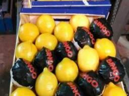 Лимоны. Прямые поставки из Испании.