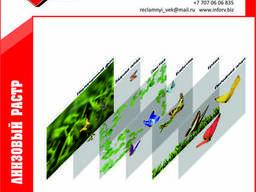 Линзовый растр (стерео листы)