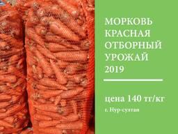 Морковь Красная, оптом со склада