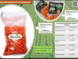 Морковь мытая фасованная 1кг и 18 кг производства РБеларусь