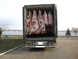 Мясо говядины, обваленное, потушные блоки