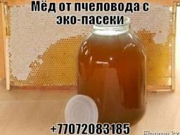 Мёд горный от пчеловода с эко-пасеки