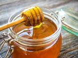 Мёд в оптовом цене - photo 1