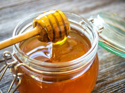 Мёд в оптовом цене
