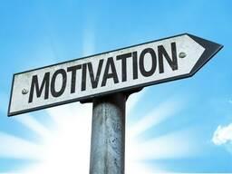 Написание мотивационных и рекомендательных писем.