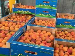 Нектарин и персик из Испании. Прямые поставки. - фото 4