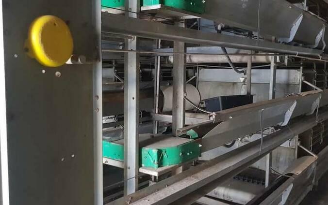 Оборудование под птицефабрику