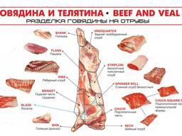 Отруба, разделка, говядина оптом