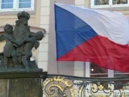 Перевод справки о несудимости Казахстана на чешский язык