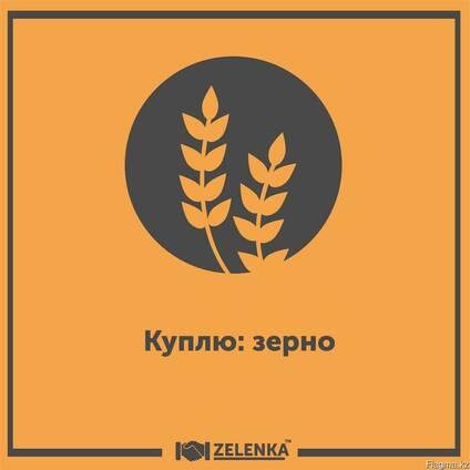 Покупка зерна и зерновых культур
