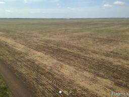 Продам земельный участок сельхоз назначения. - фото 3
