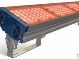 Прожекторное освещение TL-PROM 200 PR PLUS FL Amber