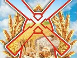Пшеницу/зерно