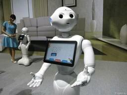 Разработка рекламных роботов для маркетинговых акций в Алмат