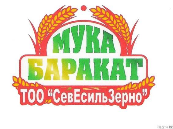 Реализуем Durum Desf.пшеницу твердых сортов на экспорт! 2017