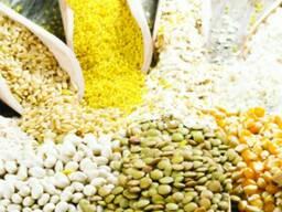 Реализуем ячмень, пшеницу, лен и другие с/х культуры