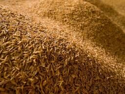 Рисовая лузга (шелуха)