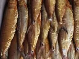 Рыба копченая Рипус, Пелядь, Нельма. - фото 1