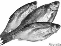 Рыба вяленая и холодного копчения