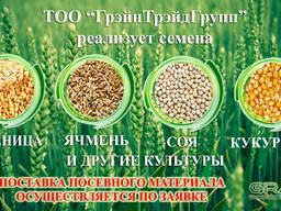 Семена пшеницы, ячменя, сои, кукурузы и подсолнечника