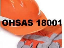 OHSAS 18001:2007 (СТ РК OHSAS 18001-2008)
