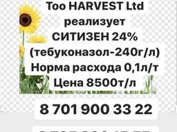 Ситизен Тебуконазол 240г/л