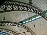 Сложные арки большого пролета и т. д - фото 2