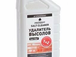 Средство для удаления высолов Prosept Salt Cleaner