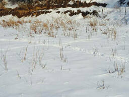 Срочно продам участок 9 соток Наурызбайский р-н Каменка