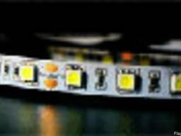 Светодиодная гибкая лента SMD-5050 в России. Лента в Алматы