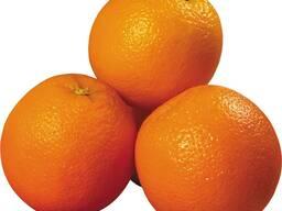 Свіжі фрукти для продажу