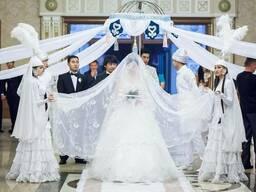 Торты - свадебные, детские, корпоративные - на заказ