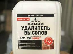 Удалитель высолов Salt Cleaner (смывка для соли)